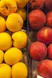 Yellow and red peaches Stock Photo