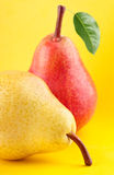 Yellow and red pear fruits with green leaf on yellow background Stock Photo