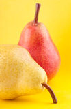 Yellow and red pears Stock Image