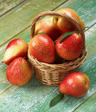 Yellow and Red Pears Royalty Free Stock Photo