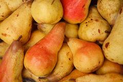 Yellow red pears Royalty Free Stock Image