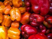 Yellow and red peppers at farmers Market Royalty Free Stock Photography
