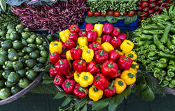 Yellow and red peppers Stock Photography
