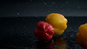 Yellow and red peppers with splashing water falling stock video footage