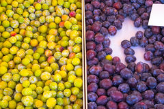 Yellow and red plums at a market Royalty Free Stock Images