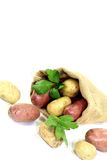 Yellow and red potatoes in the bag Royalty Free Stock Photography