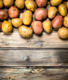 Yellow and red potatoes. On wooden background royalty free stock photography