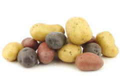 Yellow, red and purple potatoes. On a white background royalty free stock images
