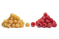 Yellow and red raspberries Stock Images