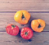 Yellow and red raw ripe whole tomatoes rustic wooden background. Top view Stock Photography