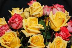 Yellow red roses bouquet Stock Photos