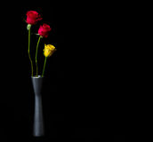 Yellow and red roses in vase Stock Photos