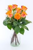 Yellow with red roses in a vase isolated Stock Photography