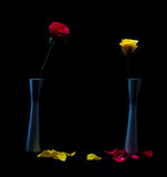 Yellow and red roses in vas Stock Images