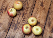 Yellow-red seasonal apples on the background of burned boards Stock Images