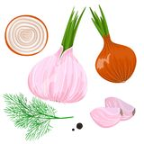 Yellow, red and spring onion and garlic. Isolated on white. Stock Stock Photography