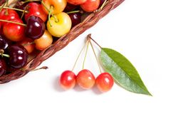 Yellow and red sweet cherry in basket with green leaf isolate on. Basket with ripe berries of yellow and red sweet cherries and several yellow fruit with green royalty free stock images