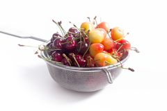 Yellow and red sweet cherry in steel colander isolate on white Royalty Free Stock Photos