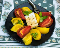 Yellow and red tomato and feta cheese salad with basil leaves Stock Images