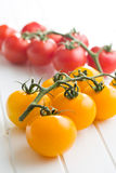 Yellow and red tomatoes Stock Photos