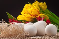 Yellow and red tulips with white eggs on straw tra Stock Photography