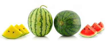 Yellow red water melon on white background Stock Images