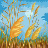 Yellow reed leaves royalty free illustration