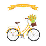 Yellow retro bicycle with tulip bouquet in floral basket Stock Image