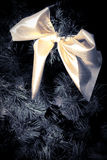 Yellow ribbon on fur tree Stock Photo