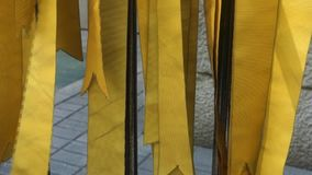 Yellow Ribbons. Hanging yellow ribbons, a symbol of prayer for the American troops who've lost their lives in the Iraq and Afghanistan wars stock footage