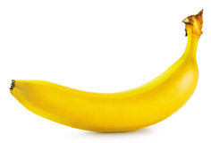 Yellow ripe banana Royalty Free Stock Image
