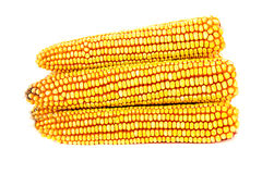 Yellow ripe corn collected Stock Images