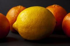 Yellow ripe lemon with four mandarin oranges in the background o stock photo