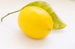 Yellow ripe lemon. On a white background Stock Images