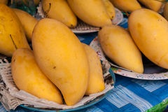 Yellow ripe mango Royalty Free Stock Photo