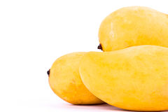 Yellow ripe mangos have the sweet taste on white background healthy fruit food isolated Stock Images