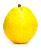Yellow ripe pear 2 Royalty Free Stock Image