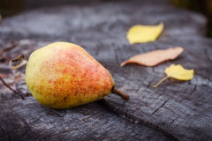 Yellow ripe pear Royalty Free Stock Photography
