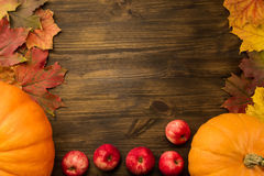 Yellow ripe pumpkin, maple leaves, red apples on wooden background. Stock Images