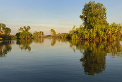 Yellow river billabong Royalty Free Stock Photography