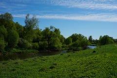 Yellow River som flödar runt om gröna träd arkivfoton