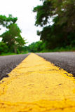 Yellow Road Markings Stock Image