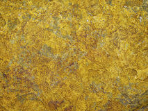 Yellow Rock Background. Of a sea cliff. Macro shot Royalty Free Stock Images