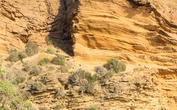 Yellow rock sediments Royalty Free Stock Photos