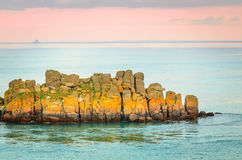 Yellow rocks on French coast, St-Malo, France Stock Images