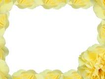 Yellow Rose. Border Stock Image