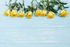 Yellow Rose Στοκ Φωτογραφία