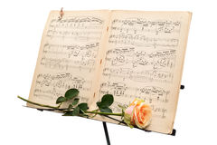 Yellow rose and an ancient music score isolated on white background Stock Image