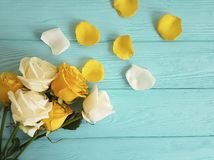 Yellow rose freshness on a blue wooden background, romantic celebration frame. Yellow rose on a blue wooden background, frame celebration freshness Stock Photos
