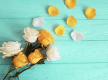 Yellow rose on a blue wooden background, romantic celebration frame. Yellow rose on a blue wooden background, frame celebration romantic Royalty Free Stock Images